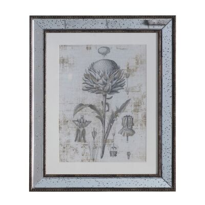 Gold Foil Botanical Study II Framed Wall Art Print, 58cm