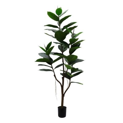 Potted Artificial Rubber Tree, 150cm