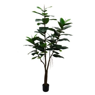 Potted Artificial Rubber Tree, 180cm