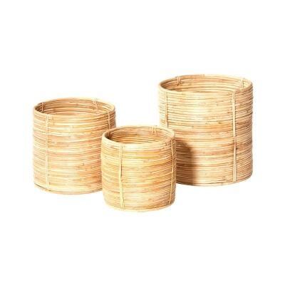 Shenan 3 Piece Cane Rattan Basket  Set