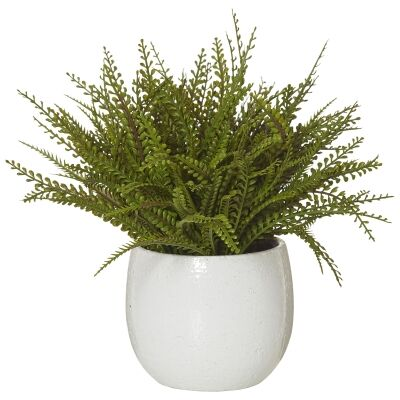 Artificial Baby Jewel Fern in Tub Pot, Large