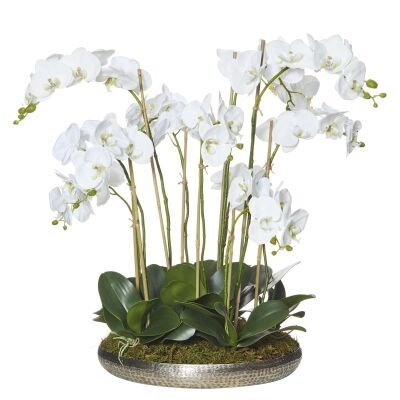Element Platter Potted Artificial Phalaenopsis, Silver Pot