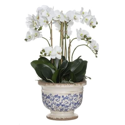 Artificial Phalaenopsis Orchid in Fleur Footed Bowl