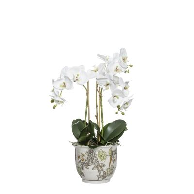 Artificial Phalaenopsis Orchid in Lucia Pot, Small