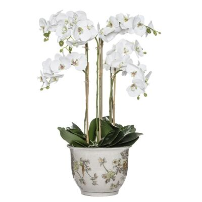 Artificial Phalaenopsis Orchid in Lucia Pot, Large