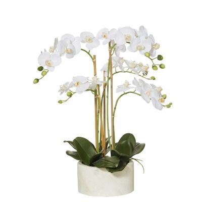 Artificial Butterfly Orchid in Stone Pot