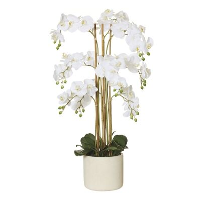Artificial Butterfly Orchid in Stone Pot, Large