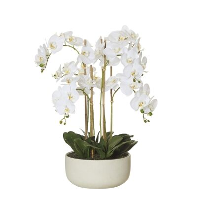 Artificial Butterfly Orchid in Stone Pot, Small
