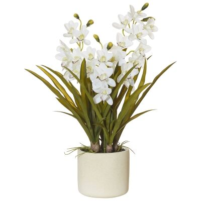 Artificial Cymbid Orchid in Stone Pot, Large, White Flower