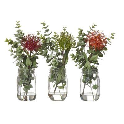 3 Piece Artificial Pincushion Plant in Jar Set