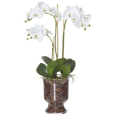 Artificial Phalaenopsis in Odette Bowl, Medium