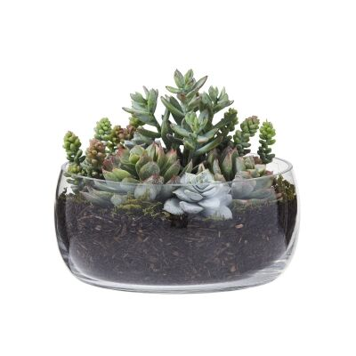 Artificial Succulent Garden in Scarlett Glass Bowl, Extra Small
