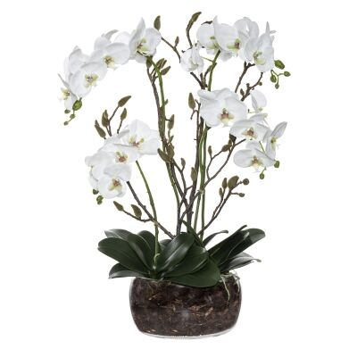 Artificial Phalaenopsis Orchid in Scar Bowl Vase, Large