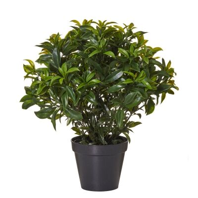 Potted Artificial Sweetbay Bush, 48cm