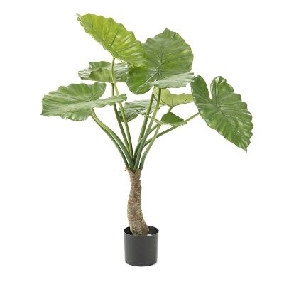 Kessell Potted Artificial Alocasia Plant, 85cm