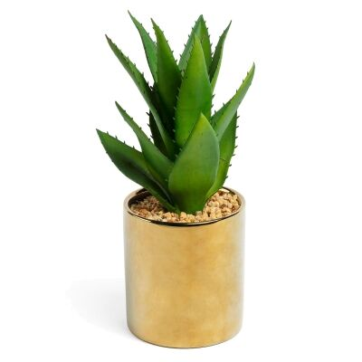 Mccabe Artificial Succulent in Ceramic Pot