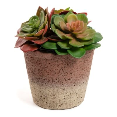 Zelena Artificial Sinocrassula Indica in Ceramic Pot