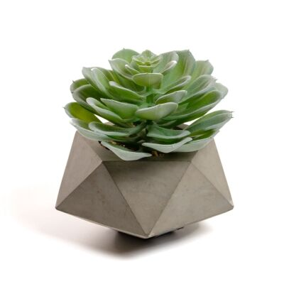 Zelena Artificial Echeveria Glauca in Cement Pot