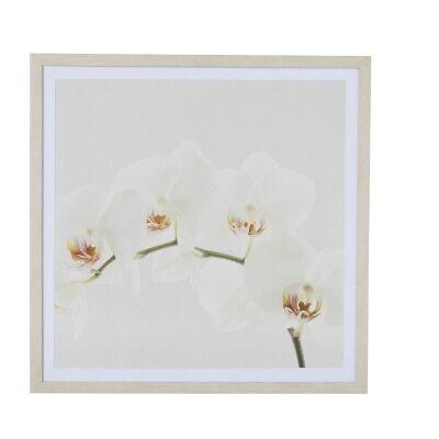 Orchid Handmade Framed Canvas Wall Art, 60cm