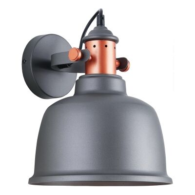 Alta Iron Wall Light, Matt Grey