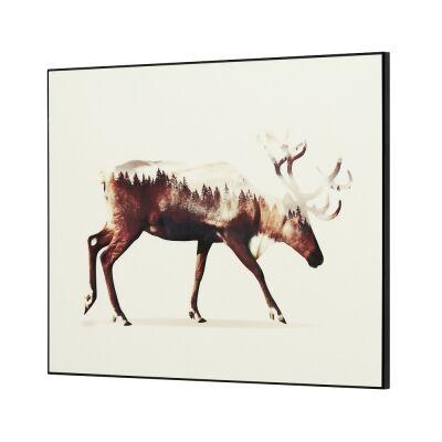 Wilden Framed Wall Art Print, Moose In Motion, 80cm