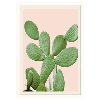 Bora Framed Wall Art Print, Bunny Ear Cactus, 60cm