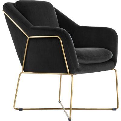 Olia Velvet Fabric Armchair, Black / Gold