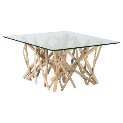 Semarang Glass & Teak Branch Square Coffee Table, 80cm