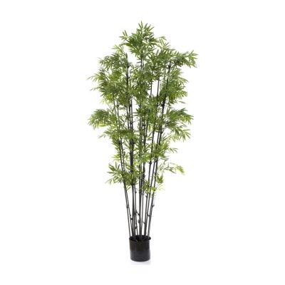 Potted Artificial Japanese Bamboo, Black Stem, 190cm