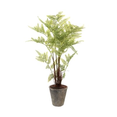 Potted Artificial Fern, 100cm