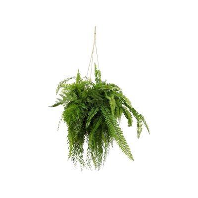 Hanging Artificial Fern, 90cm