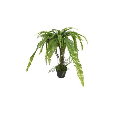 Potted Artificial Fern, 74cm