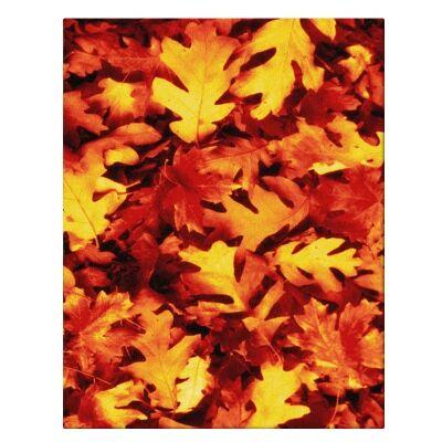 Pheonix Autumn Modern Rug, 200x290cm