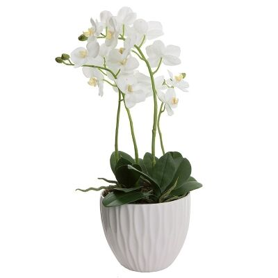 Artificial Orchid in Ceramic Pot, White