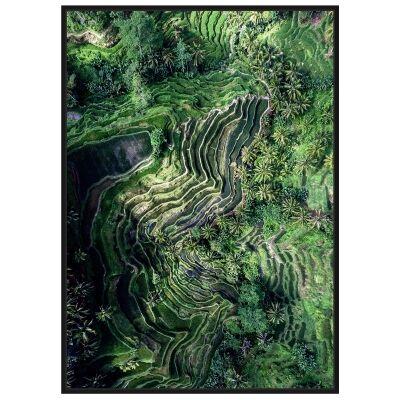 Aerial Rice Field Framed Wall Art Print, No.2, 120cm