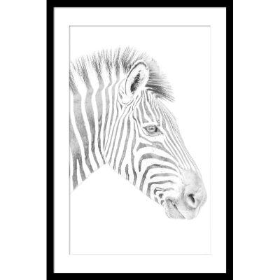 Zebra Photography Wall Art - Small