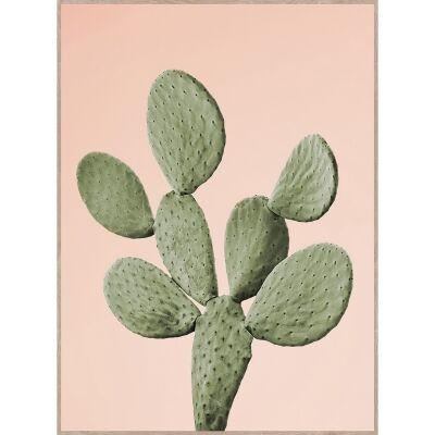 Bold Cactus Canvas Wall Art Print, Barbary Fig, 75cm