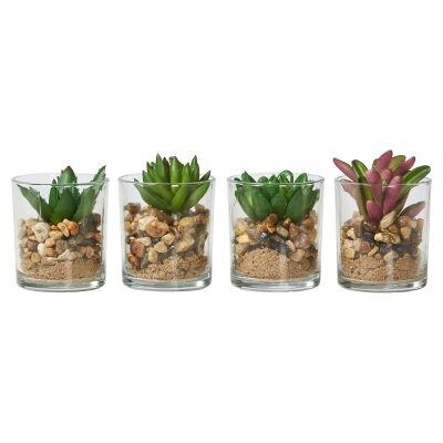 Set of 4 Assorted Faux Succulent Plants, Small