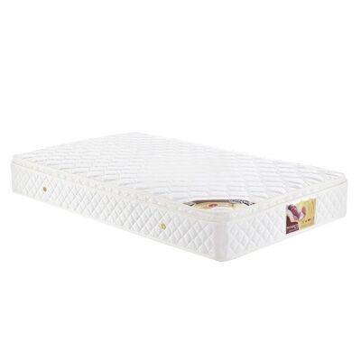 Stardust IC588 Medium Firm Mattress with Pillow Top, Single