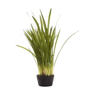 Potted Artificial Cymbidium Leaves, 100cm
