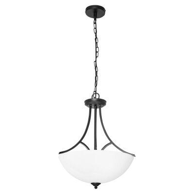 Atlanta Metal & Glass Convertible Batten Fix / Pendant Light, Black