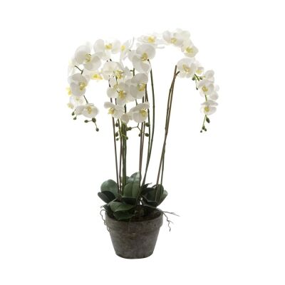 Potted Artificial Phalaenopsis Orchid, 95cm