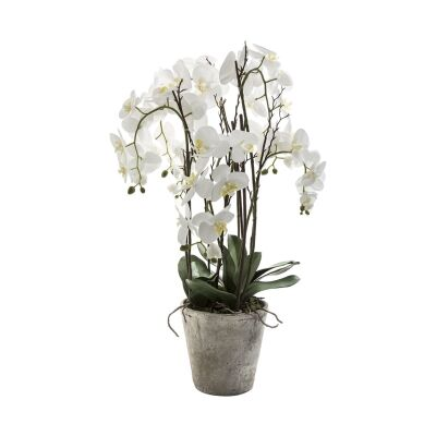 Potted Artificial Phalaenopsis Orchid