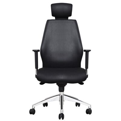 Ohio PU Leather Executive Office Chair with Headrest
