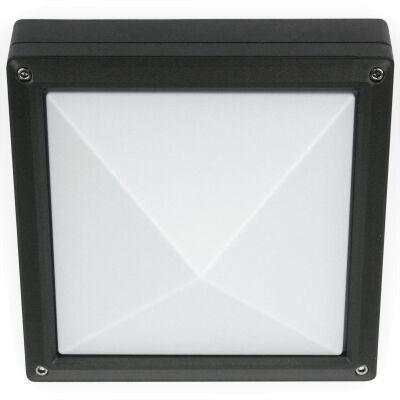 LSPR-ID6156615