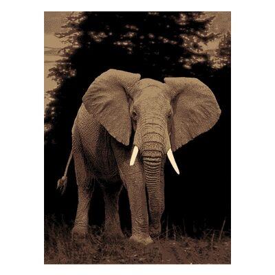 Legacy Elephant Modern Rug/Wall Art, 120x170cm
