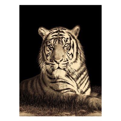Legacy Tiger Modern Rug/Wall Art, 120x170cm