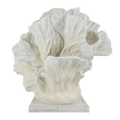 Gregor Coral Sculpture Ornamnet