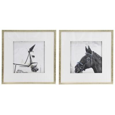 Magni 2 Piece Framed Horse Wall Art Print Set, 56cm