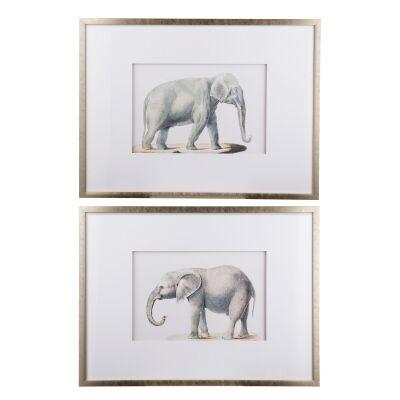 Akeley 2 Piece Framed Elephant Pencil Drawing Wall Art Set, 80cm